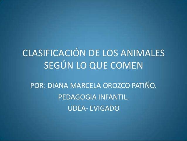 CLASIFICACIÓN DE LOS ANIMALES    SEGÚN LO QUE COMEN POR: DIANA MARCELA OROZCO PATIÑO.         PEDAGOGIA INFANTIL.         ...