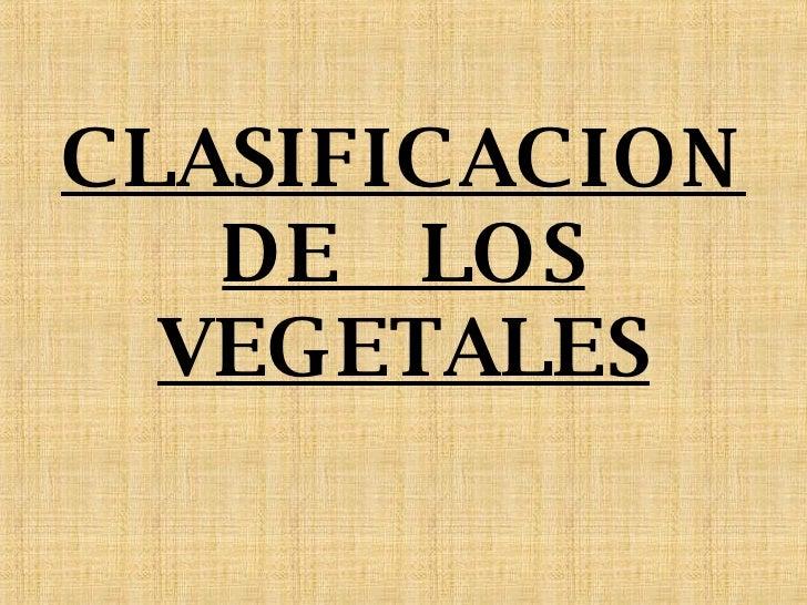 CLASIFICACION DE  LOS VEGETALES