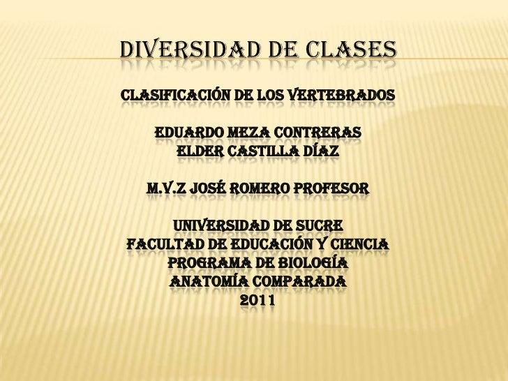 DIVERSIDAD DE CLASES<br />Clasificación de los vertebrados <br />Eduardo meza contreras<br />Elder castilla Díaz <br />M.v...