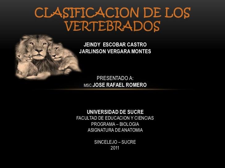 wonderful world of vertebrates