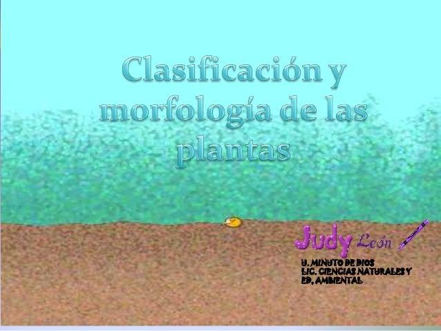 Clasificacion y morfologia de las plantas