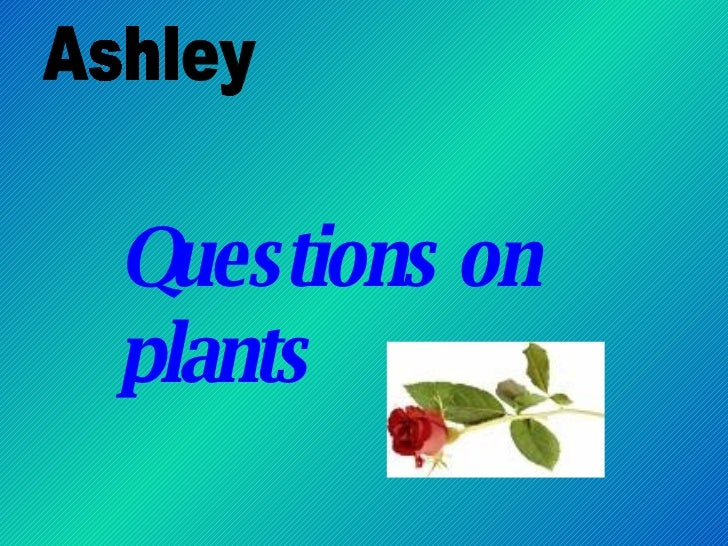 Questions on plants Ashley