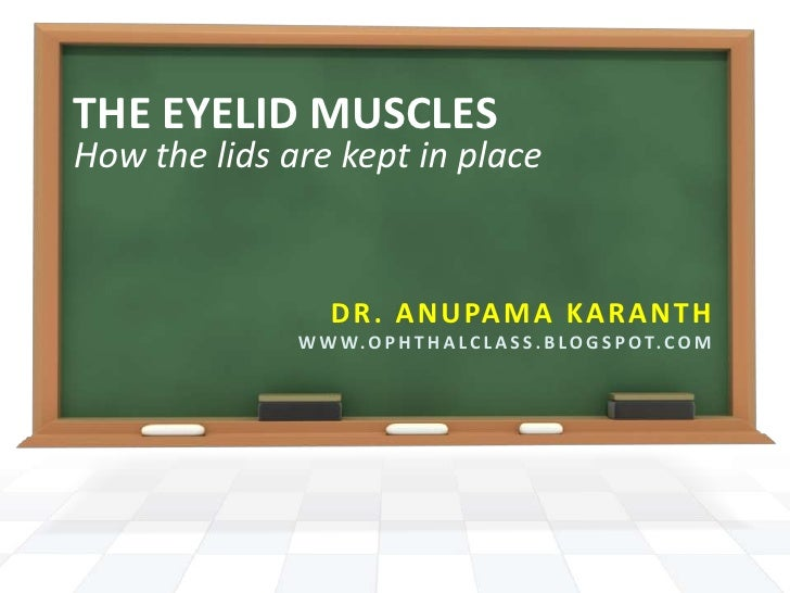 THE EYELID MUSCLES<br />How the lids are kept in place<br />Dr. Anupama Karanth<br />www.ophthalclass.blogspot.com<br />