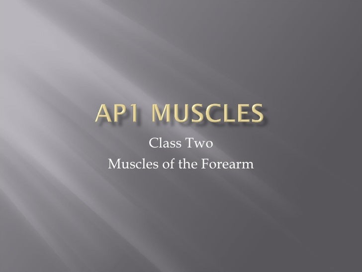 Class Two Muscles of the Forearm