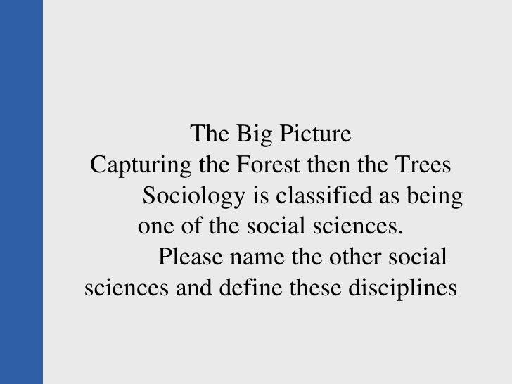 The Big Picture Capturing the Forest then the Trees Sociology is classified as being one of the social sciences. Please na...