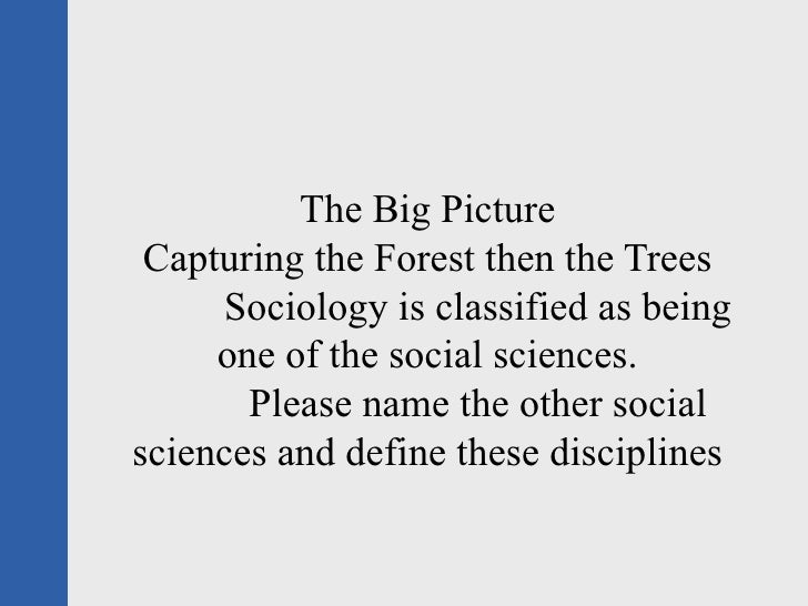 The Big Picture  Capturing the Forest then the Trees      Sociology is classified as being      one of the social sciences...