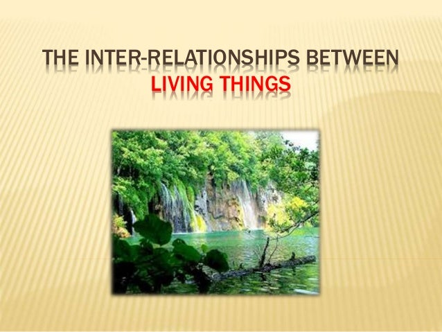 THE INTER-RELATIONSHIPS BETWEEN LIVING THINGS