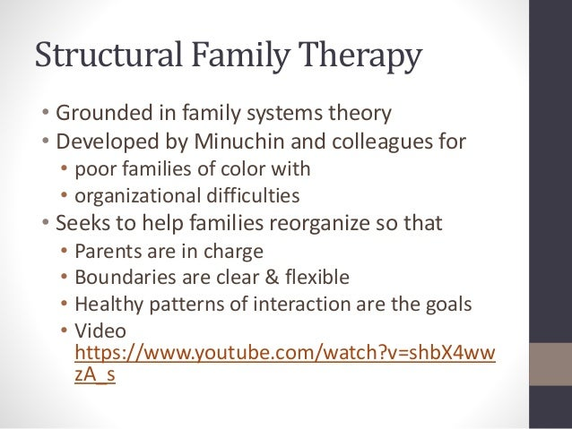 the family structural theory Using the family structural theory, how can families created following second marriages learn to function as one families go through several different.