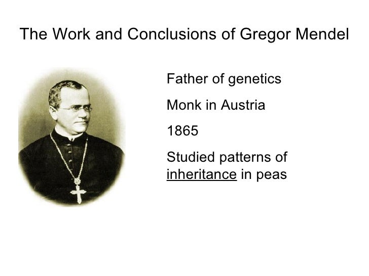 the life and work of gregor mendel the father of genetics Gregor johann mendel (1822-1884), a priest, biologist and botanist, whose work laid the foundation of the study of genetics photograph: hulton archive/getty images.