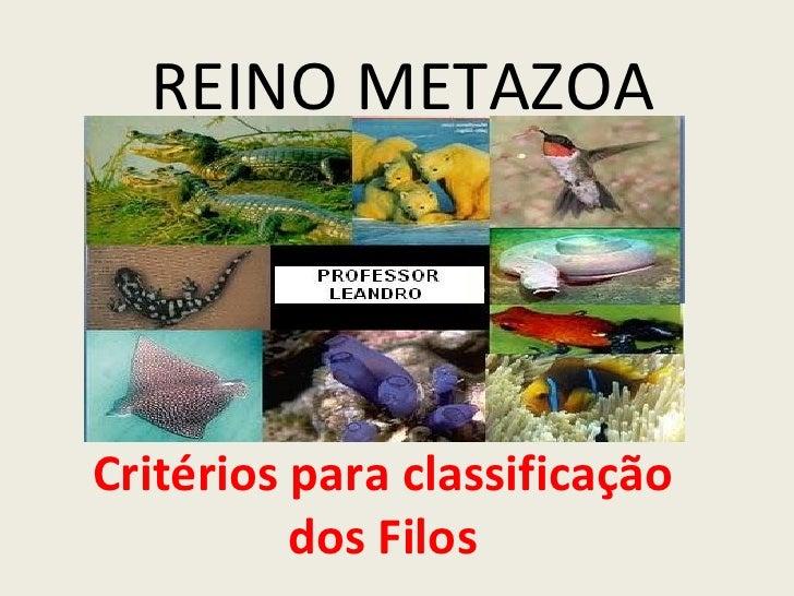 REINO METAZOACritérios para classificação          dos Filos