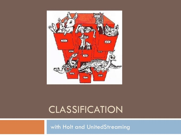 CLASSIFICATION with Holt and UnitedStreaming