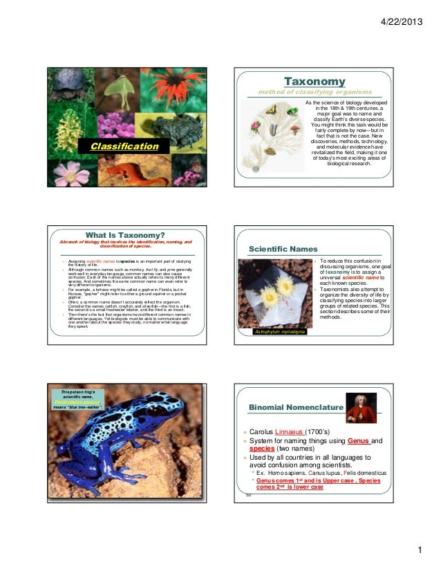 4/22/2013 1 Classification Taxonomy method of classifying organisms As the science of biology developed in the 18th & 19th...