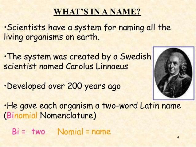 a biography of carolus linnaeus Carolus linnaeus es uno de los gigantes de las ciencias naturales ideó dos partes nomenclatura sistema formal que usamos para clasificar formas de vida de todos.