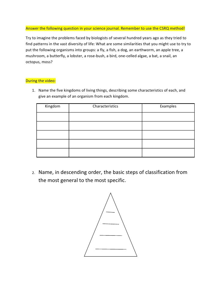 Classification Video Questions