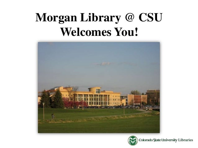 Library Services and Announcements
