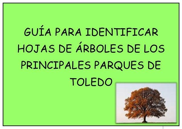 Clave hojas for Tipos de hojas ornamentales