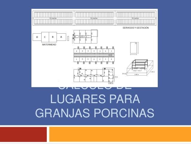 CÁLCULO DE LUGARES PARA GRANJAS PORCINAS