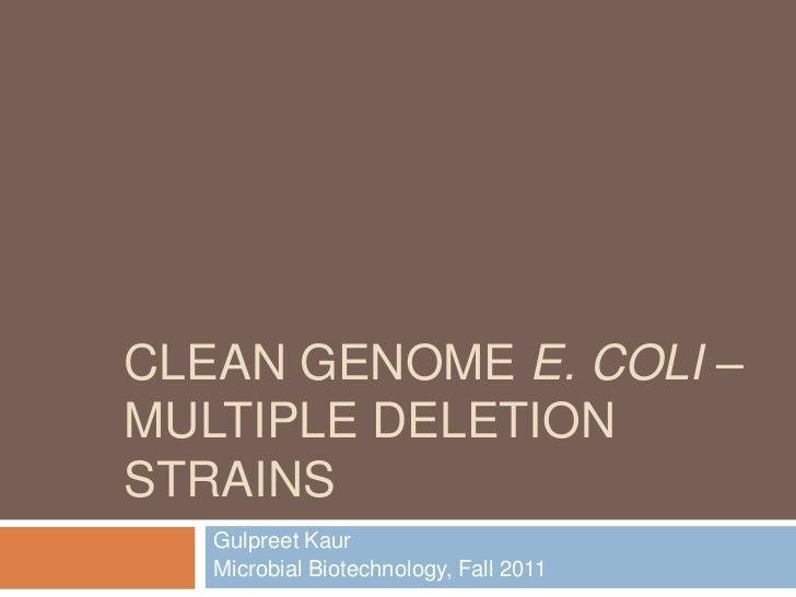 Clean genome ecoli