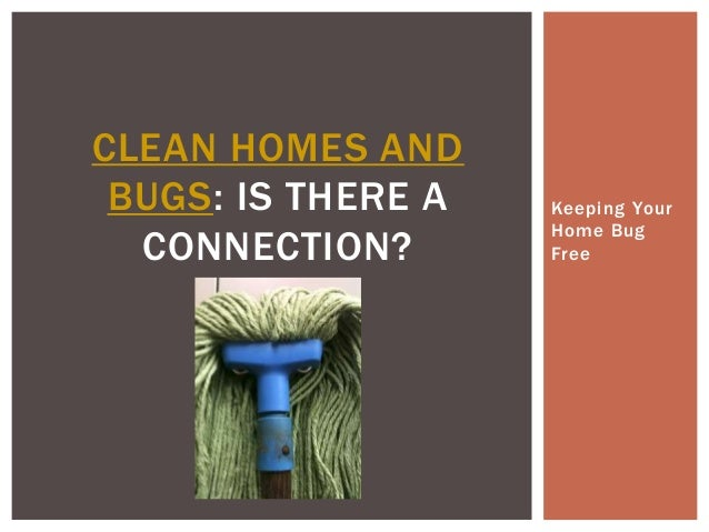 CLEAN HOMES AND BUGS: IS THERE A CONNECTION?  Keeping Your Home Bug Free