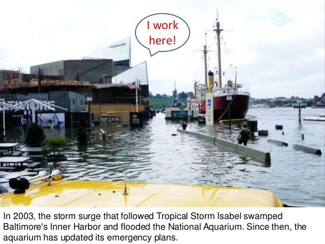 In 2003, the storm surge that followed Tropical Storm Isabel swamped Baltimore's Inner Harbor and flooded the National Aqu...