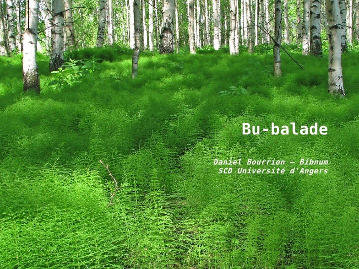 Bu-balade Daniel Bourrion – Bibnum  SCD Université d'Angers