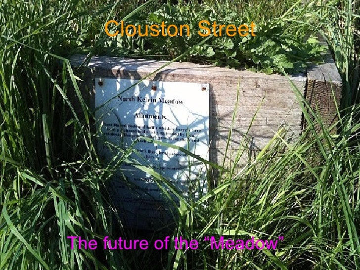 """Clouston   Street The future of the """"Meadow"""""""
