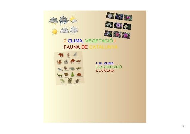 2.CLIMA, VEGETACIÓ IFAUNA DE CATALUNYA           1.ELCLIMA           2.LAVEGETACIÓ           3.LAFAUNA              ...