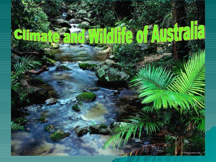 Climate and Wildlife of Australia