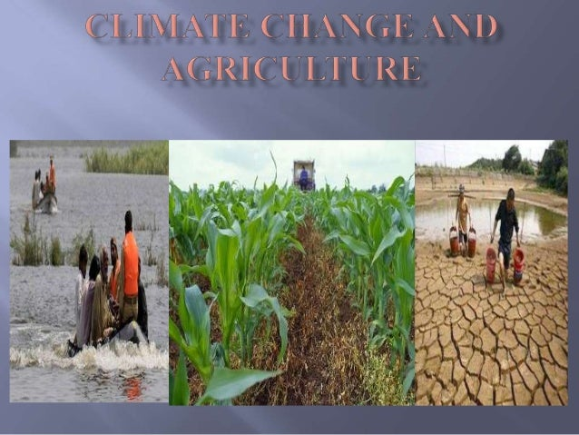  Introduction  Effects of Agriculture on Climate Change  Effects of Climate Change on Agriculture  Global Agriculture ...