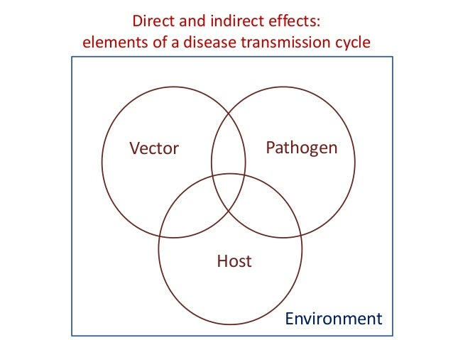 the direct and indirect effects of Direct and indirect effects of ph are usually well described in the soil fertility  research field but are rarely addressed in microbial ecology [8.