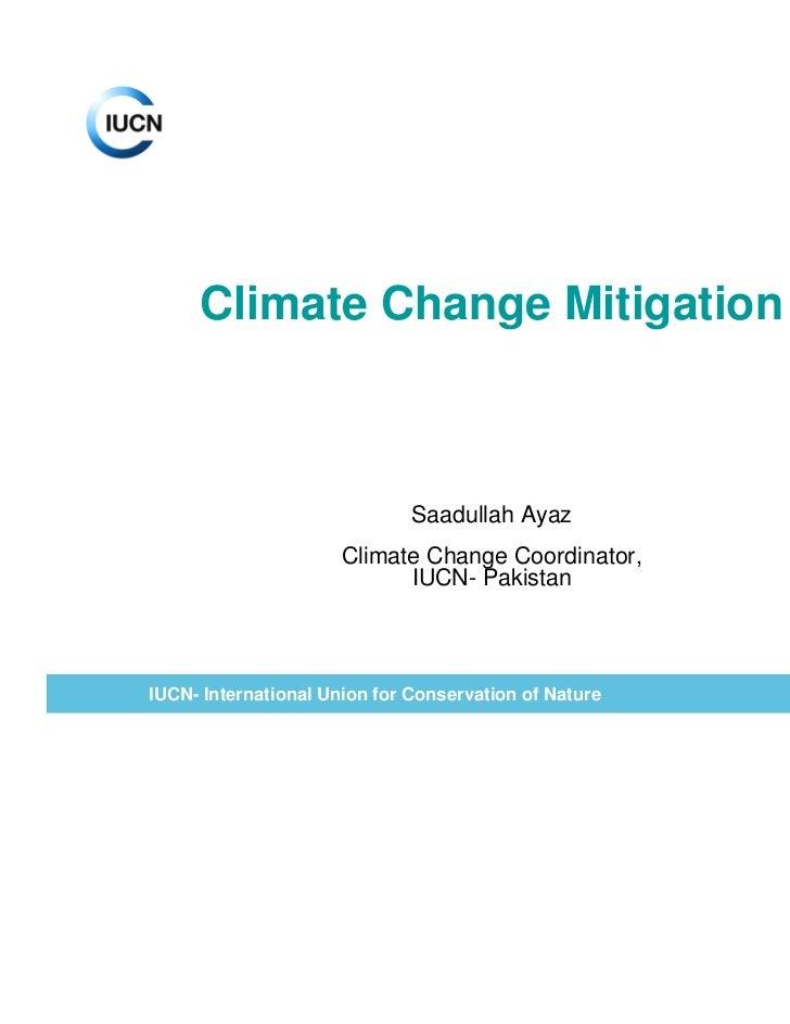 Climate change mitigation Saadullah Ayaz