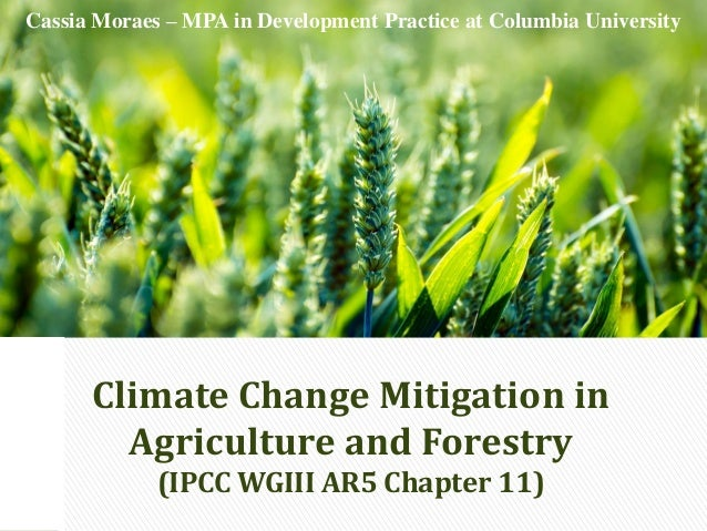 Climate Change Mitigation in Agriculture and Forestry (IPCC WGIII AR5 Chapter 11) Cassia Moraes – MPA in Development Pract...