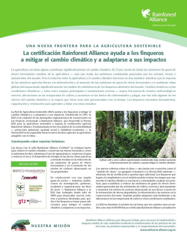 U N A N U E V A F R O N T E R A P A R A L A A G R I C U LT U R A S O S T E N I B L E         La certificación Rainforest A...