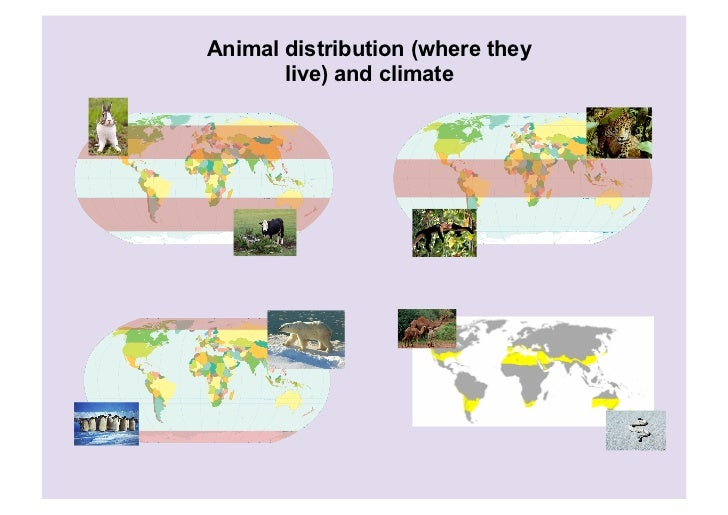 Animal distribution (where they       live) and climate