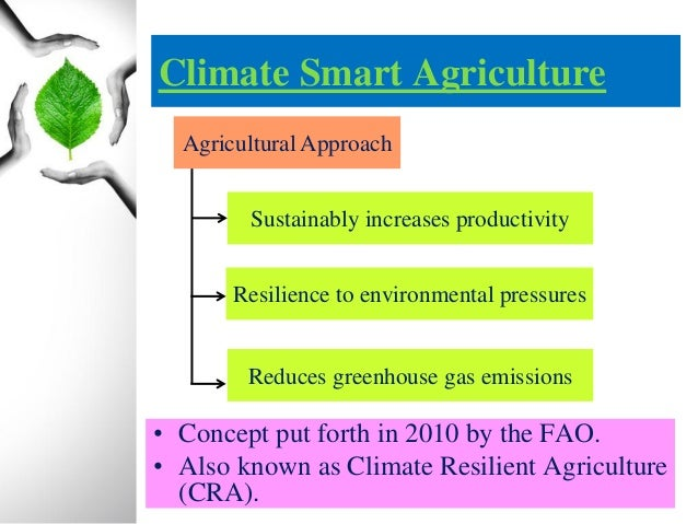 Climate Smart Agriculture 2