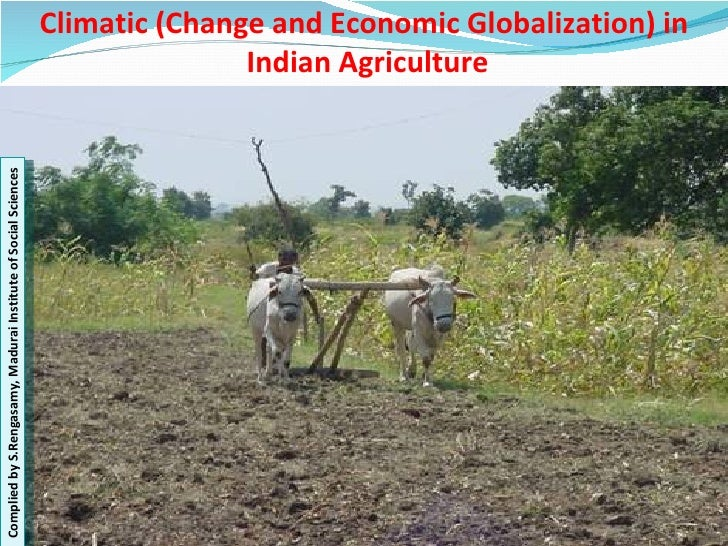 Climatic (Change and Economic Globalization) in  Indian Agriculture Complied by S.Rengasamy, Madurai Institute of Social S...