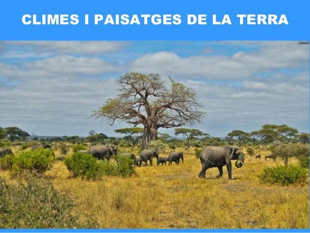 CLIMES I PAISATGES DE LA TERRA