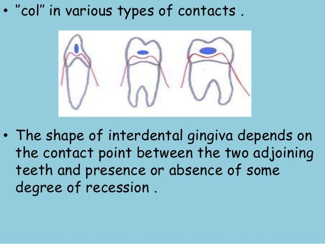 Clinical Features Of Gingiva