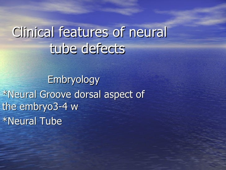 Clinical features of neural tube defects  Embryology *Neural Groove dorsal aspect of the embryo3-4 w *Neural Tube