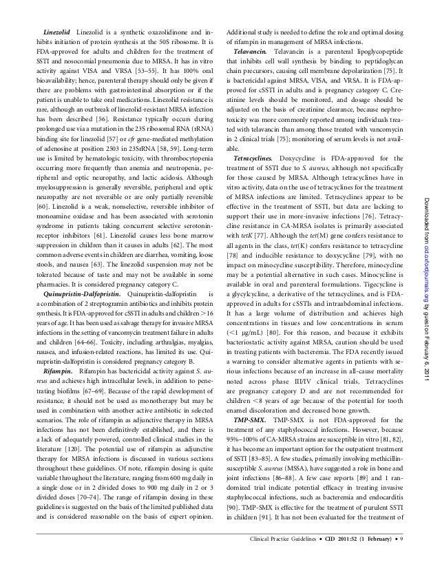 essay definition literature review