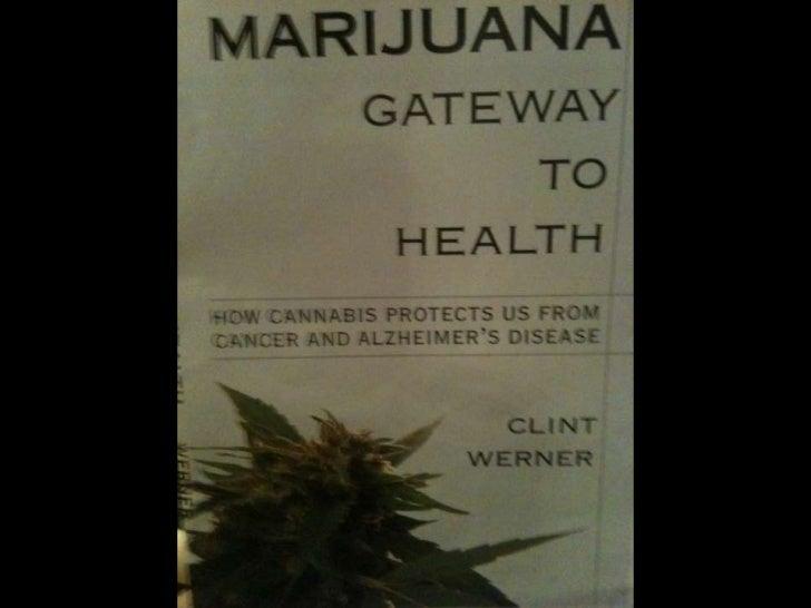 Marijuana & Seniors Aging
