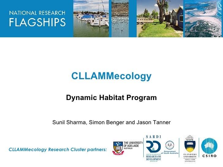 Dynamic Habitat - CLLAMM technical briefing