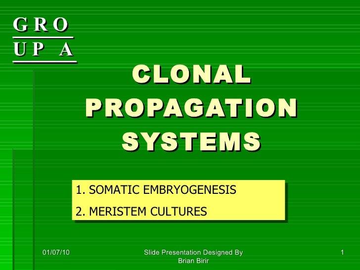 Clonal propagation tissueculture