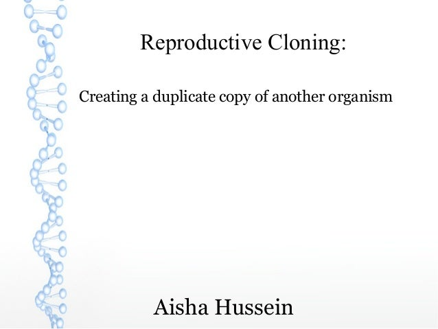 Reproductive Cloning:Creating a duplicate copy of another organism          Aisha Hussein