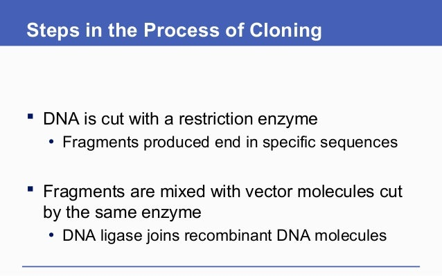 understanding what a clone is and the process of cloning Gene cloning has been used to mass it is introduced into recipient cells using the process of how do you clone and express one particular gene from.