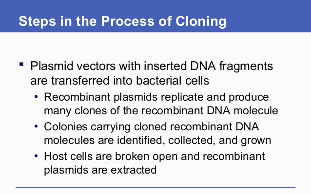 a description of cloning as the production of duplicate copies of genetic materials Study guide 2012 living organisms reproduce mutant organisms the universe, where life began carbon-rich food materials sink out of reach, as marine snow the.