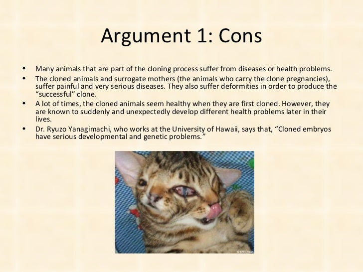 essays on cloning endangered animals The cons of cloning extinct animals these animals would undoubtedly be exploited if we were to clone extinct animals, we would be creating them almost solely for our own purposes there would be a great temptation to make profits from the practice.