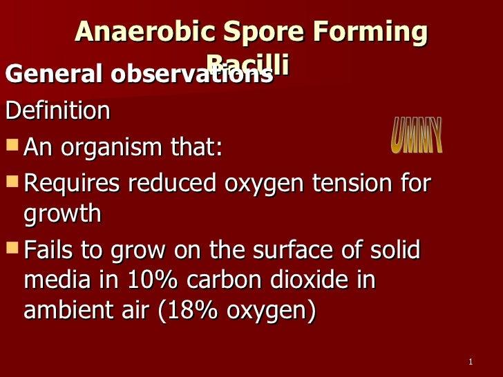 Anaerobic Spore Forming Bacilli  <ul><li>General observations </li></ul><ul><li>Definition </li></ul><ul><li>An organism t...