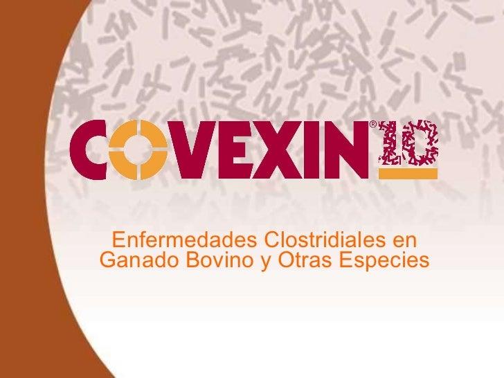 Enfermedades Clostridiales en Ganado Bovino y Otras Especies