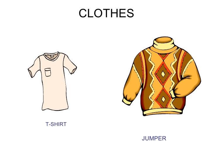 CLOTHEST-SHIRT                    JUMPER